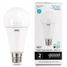 Лампа Gauss LED Elementary A67 30W E27 4100K 1/10/50